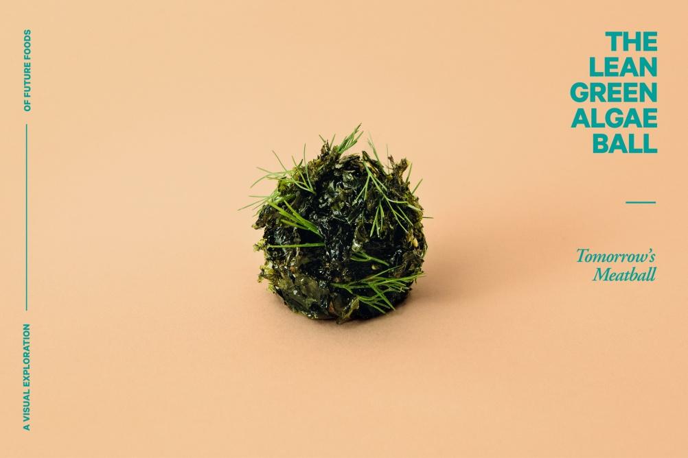 02-Algaeball-(c)-Lukas-Renlund
