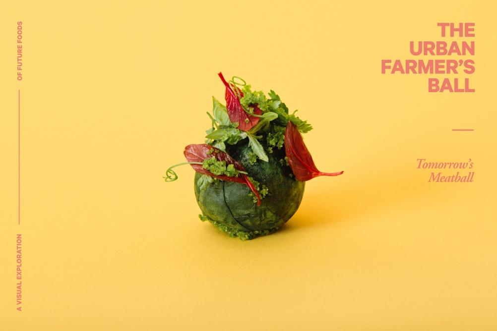 03-Farmersball-(c)-Lukas-Renlund