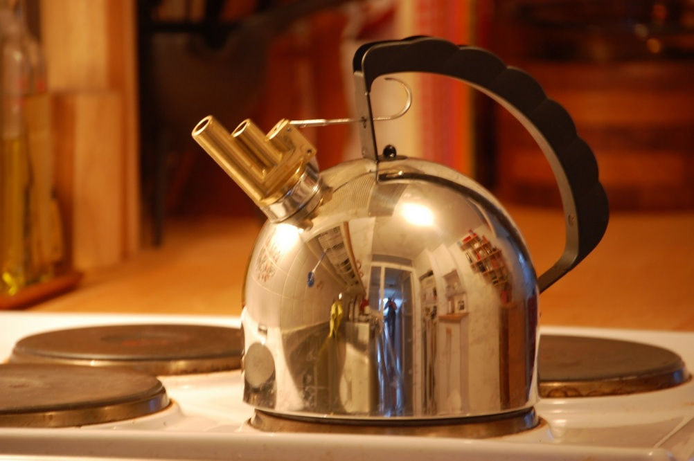 Bollitore whistling kettle for Alessi. Image by Jonas Forth