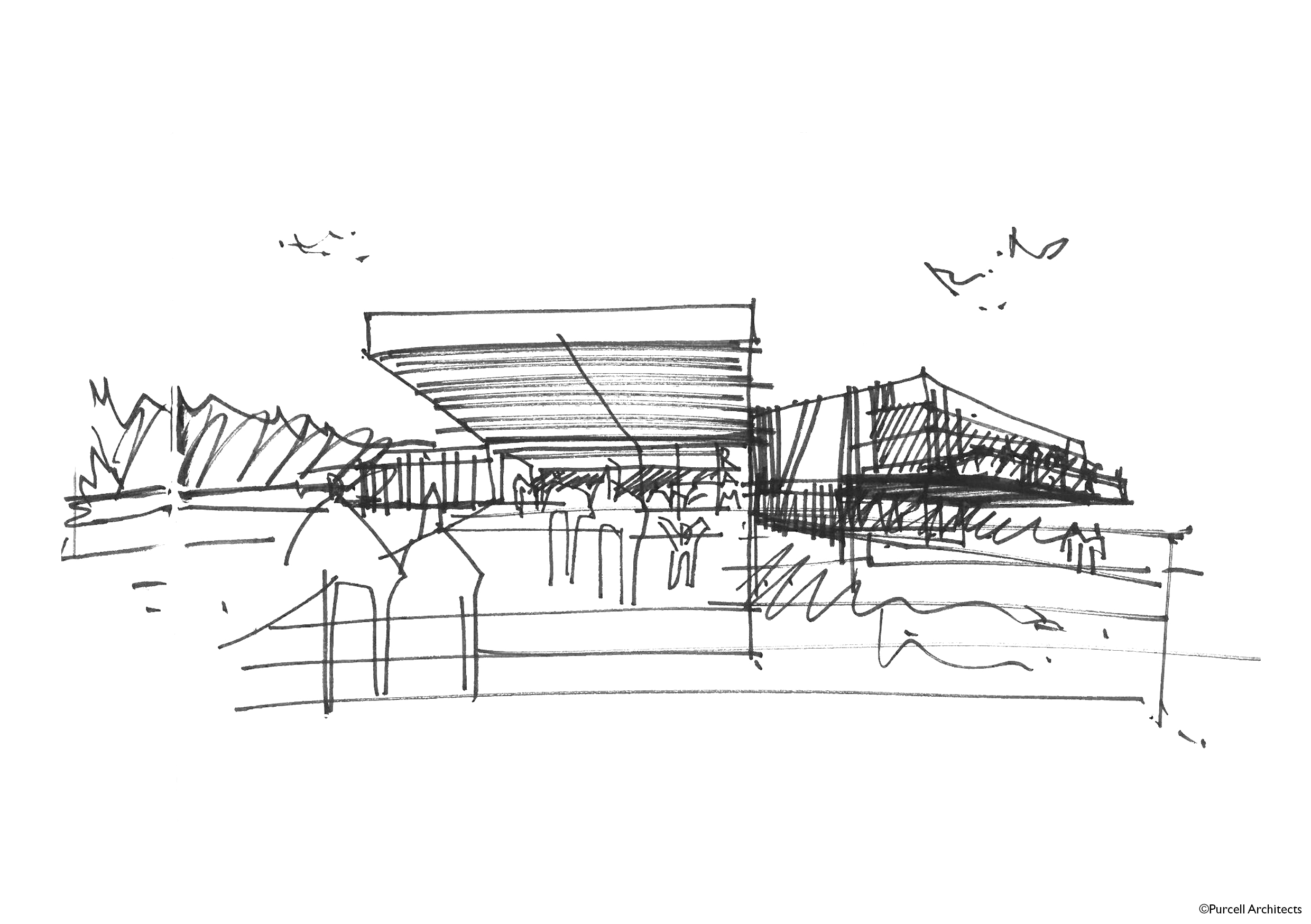 Entrance Sketch_copyright Purcell Architects (1) (1)