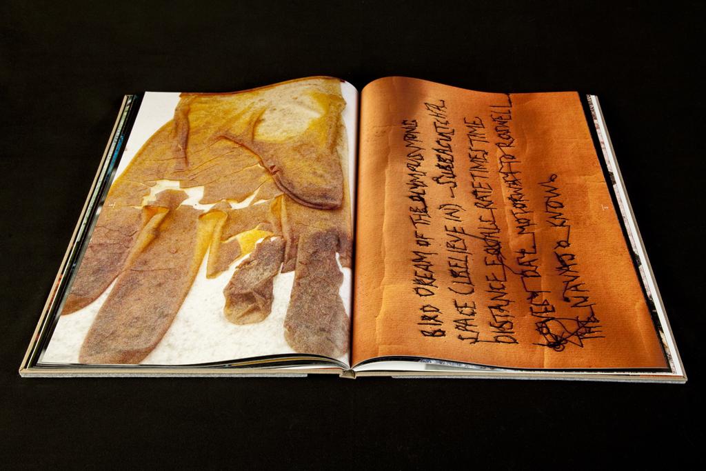 Minotaur book2