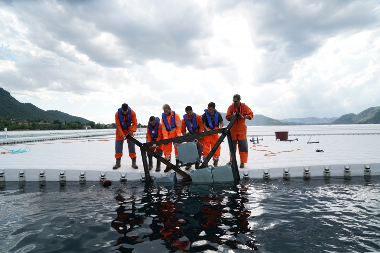 The Floating Piers - Workers push one of the frames underneath a floating element before connecting it with screws, April 2016