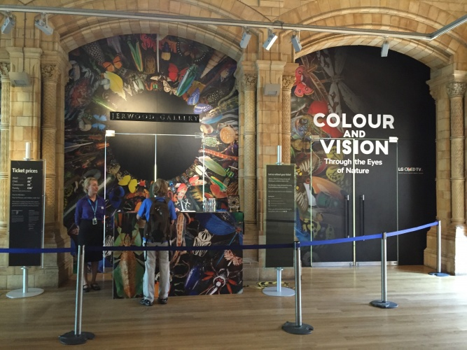 NHM Colour and Vision exhibition entrance