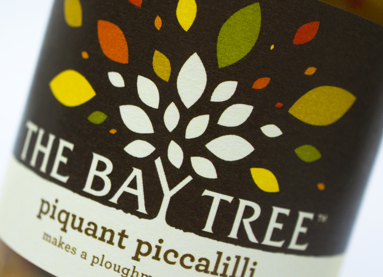 Bay_tree_close_up