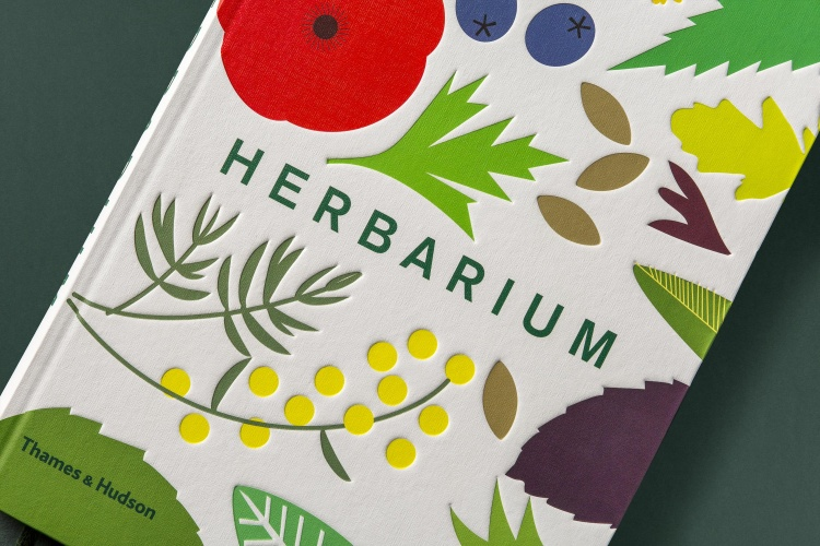 HERBARIUM_COVER_DETAIL_02_WEB