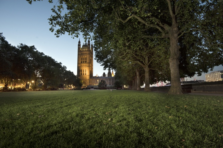 Photograph by Emily Whitfield-Wicks. Victoria Tower Gardens, Westminster, London.