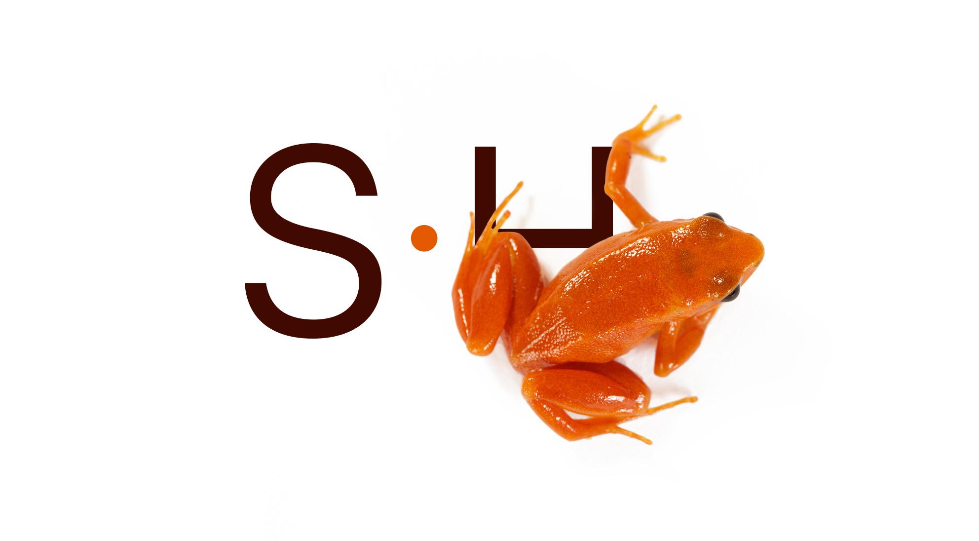 steve-hoskins-frog