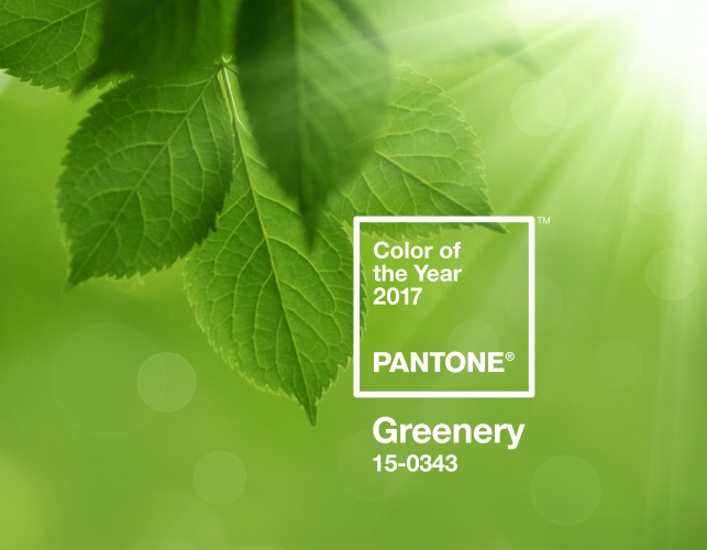 Pantone names Greenery as 2017 colour of the year | Design Week