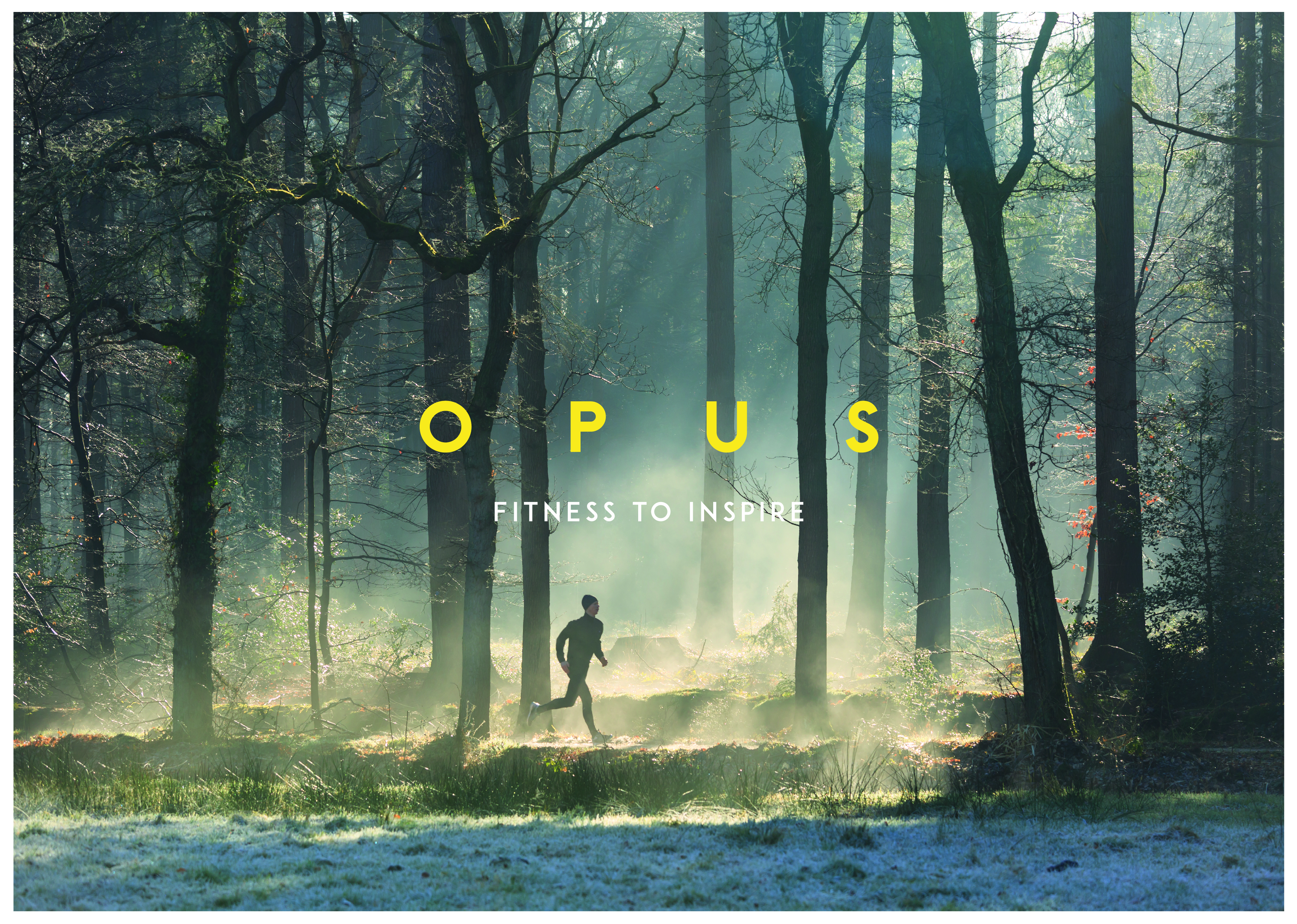 opus_logo_woods_background-01