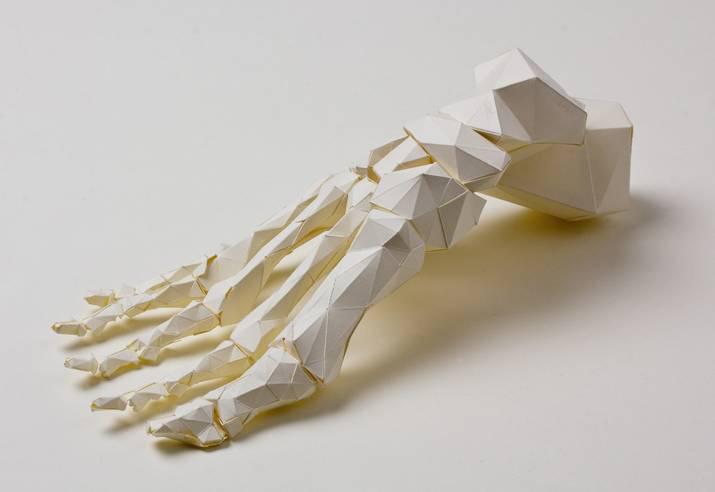 Crafted Paper Foot Lo Siento Design Week