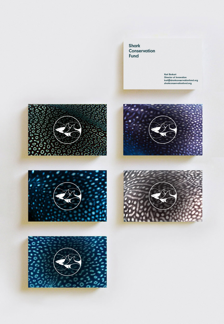Leonardo DiCaprio Foundation reveals playful branding for