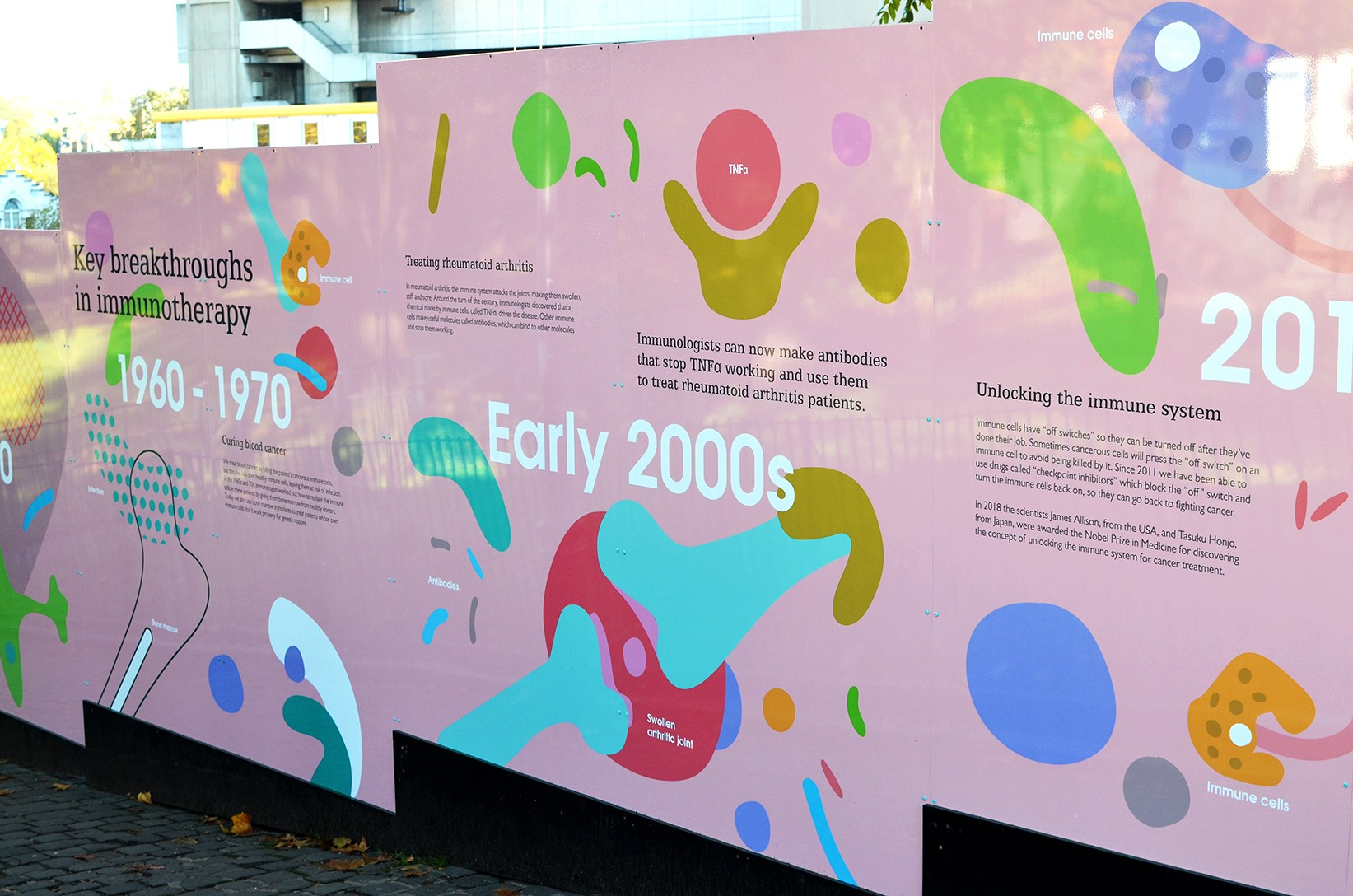 How graphic design is getting people excited about medical research and the immune system