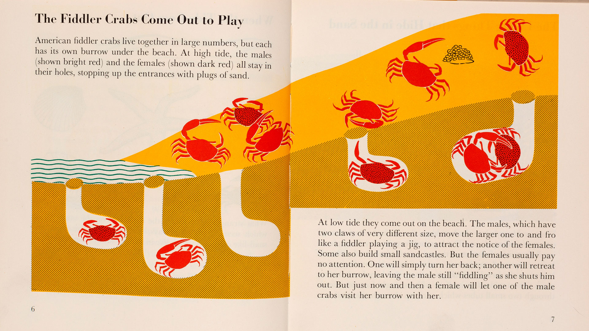 How Marie Neurath used illustration to help children understand science