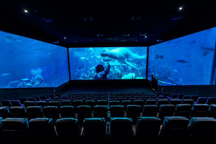Screen at the Reels Cinema at the Dubai Mall, courtesy of Chapman Taylor