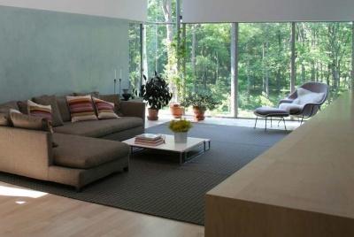 crittall windows living room L shaped sofa brown rug green wall