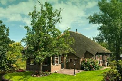 Braemar-arboriculture-image