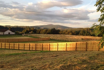 View within Plot 10 looking north east towards Aberlour