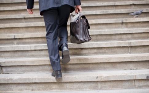 climb social mobility businessman suit pigeon