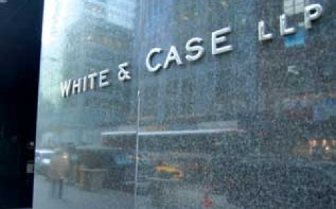 white case 317