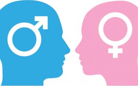 male female gender equality