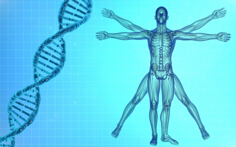 DNA, life sciences, medicine, de vinci