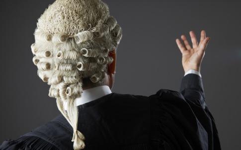 wig, advocacy