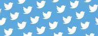 Twitter masthead