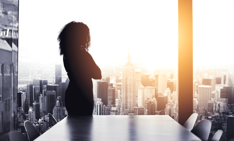 woman silhouette boardroom
