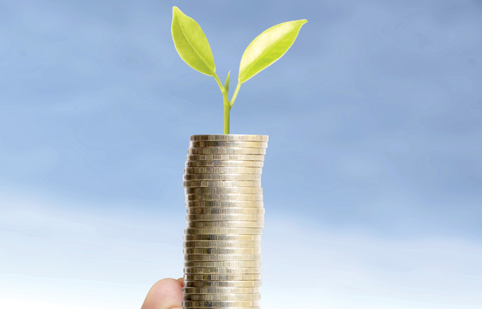 Sprouting-Money-Growth-Emerging-Currency-700.jpg