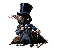 Mortgage Mole-2017