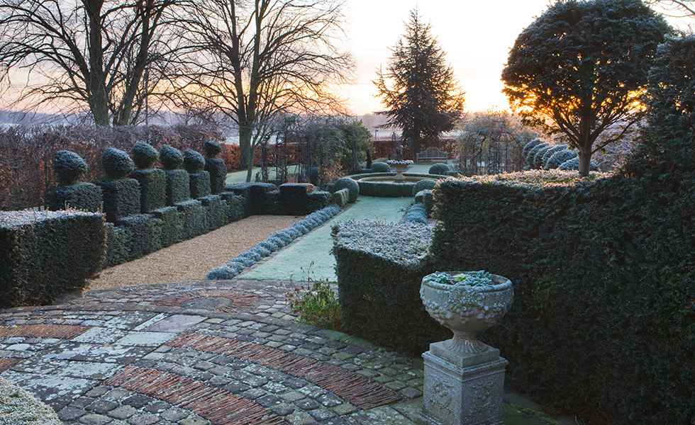 garden in winter
