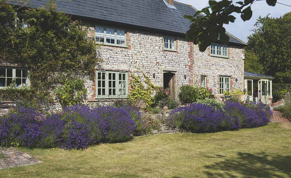 lloyd cottage garden with lavender period home