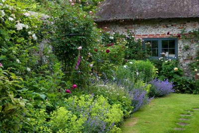 cottage garden with orchestrated colours