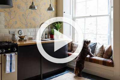 apartment in Edinburgh dog in kitchen