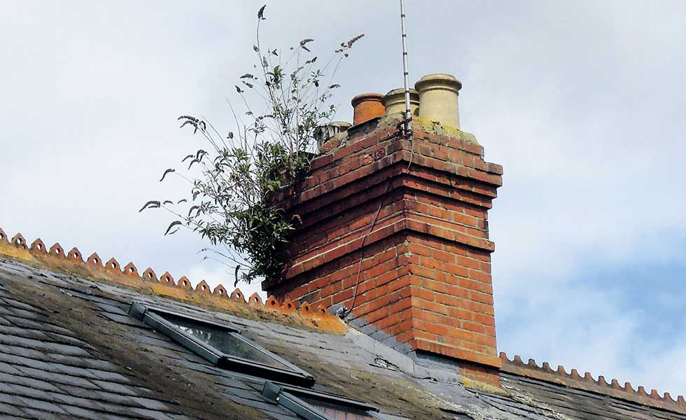 neglected chimney stack