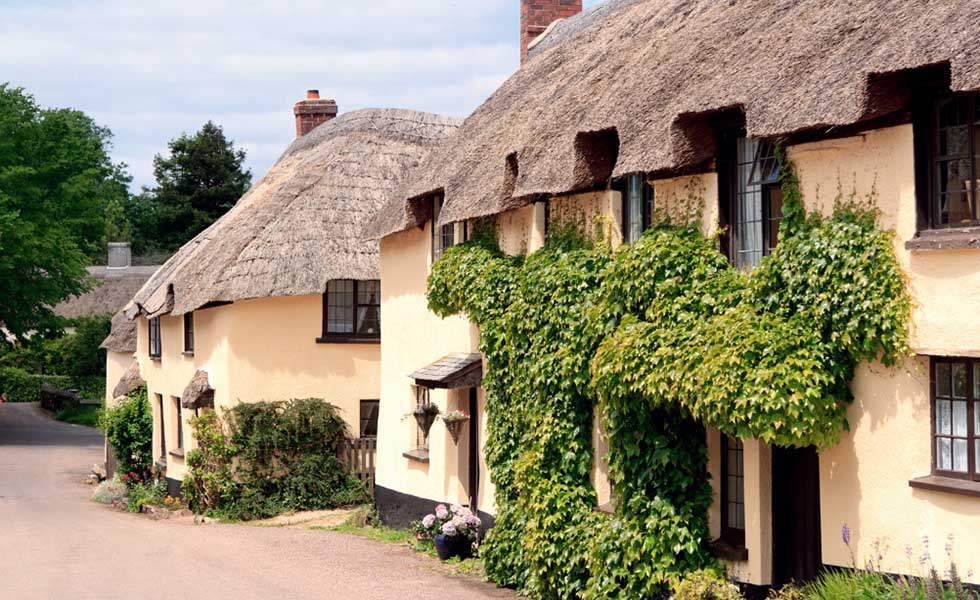 thatched roof conservation areas
