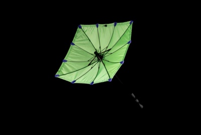 chimney umbrella green