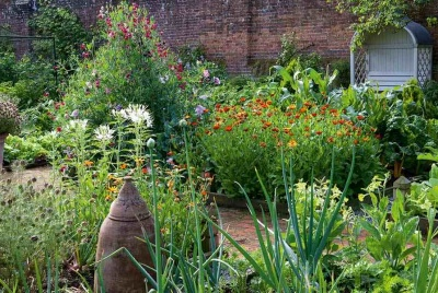 kitchen garden flowers and veg