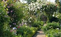 rose garden archway