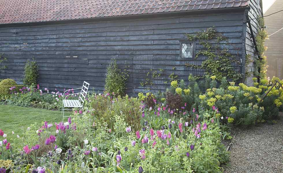 tulips garden essex barn