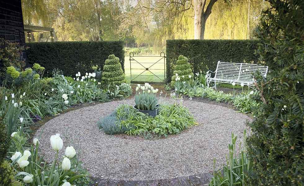 tulips garden white garden