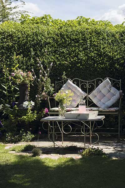 cottage garden bench in the sun