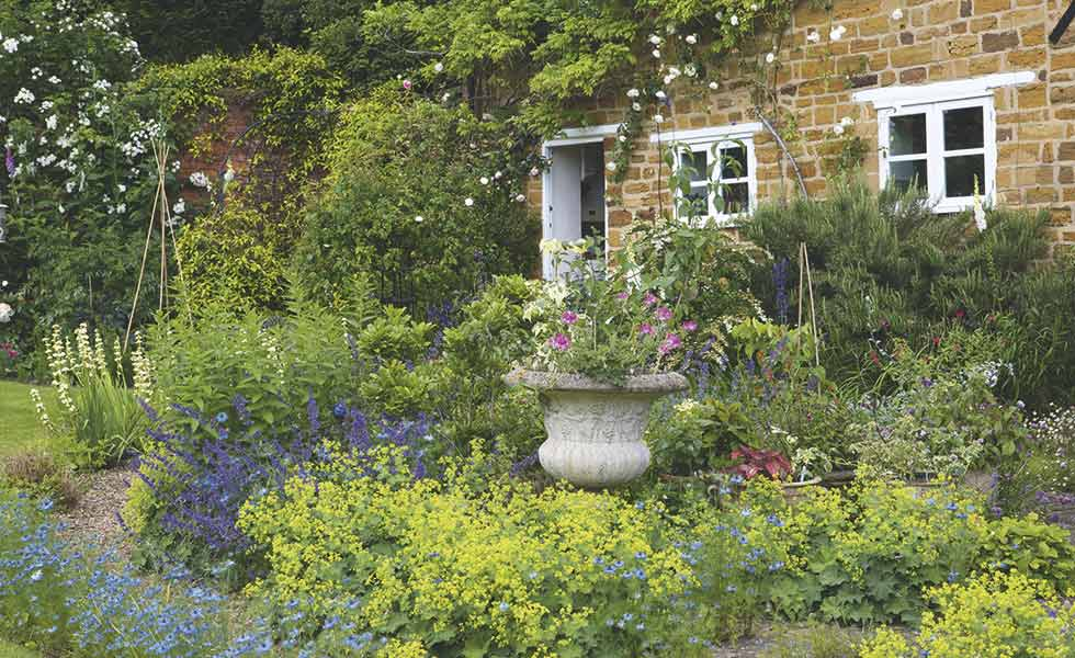cottage garden mixed borders