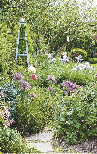 cottage garden path planting