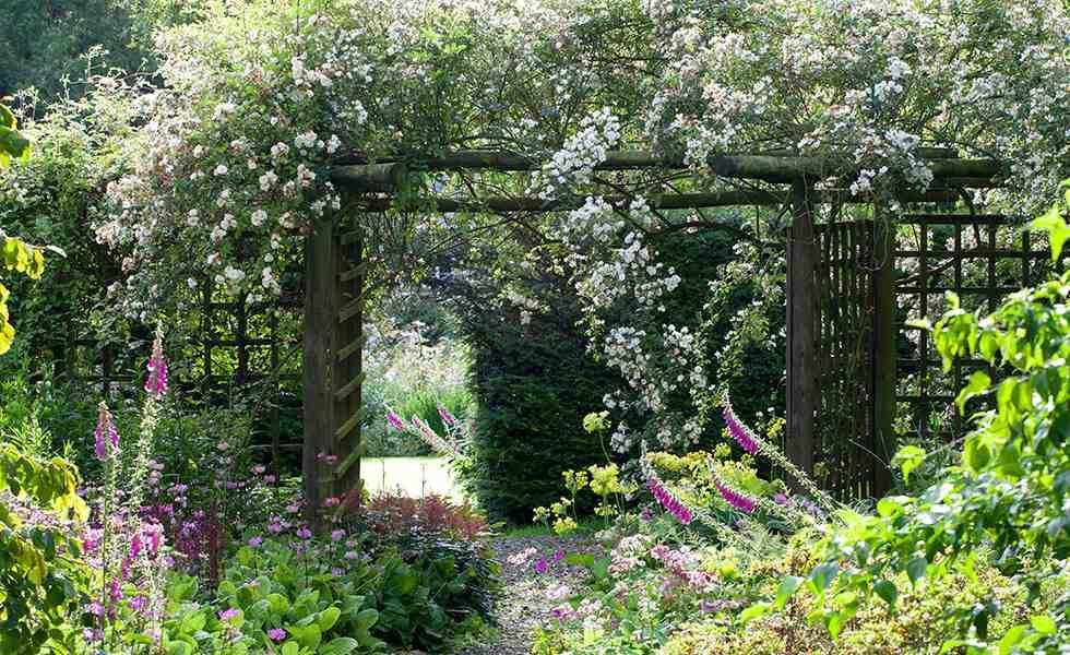 cottage garden pergola