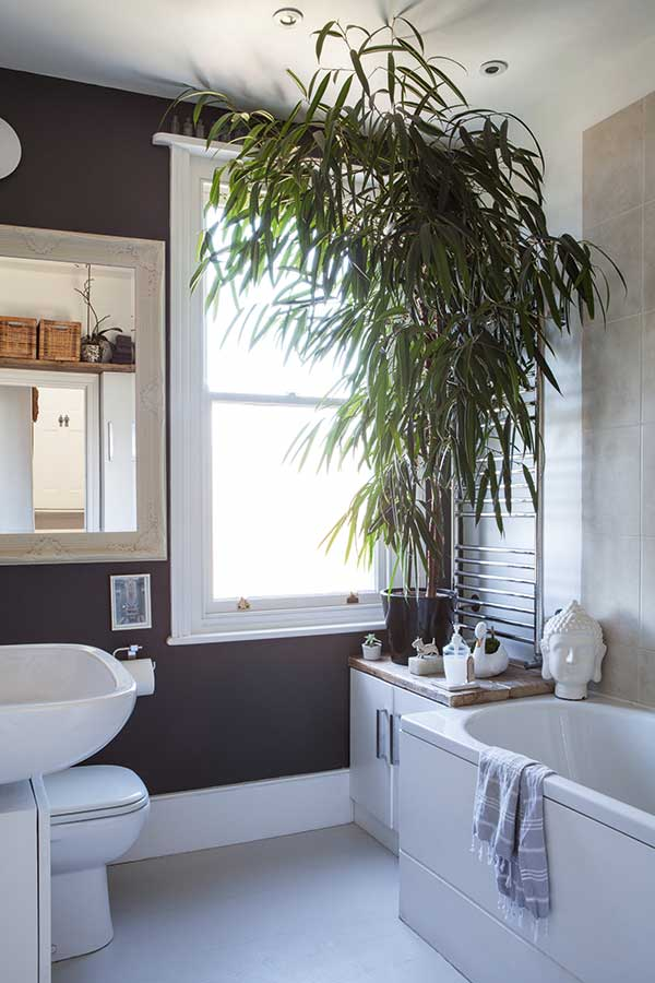 bathroom with dark and white walls and plant