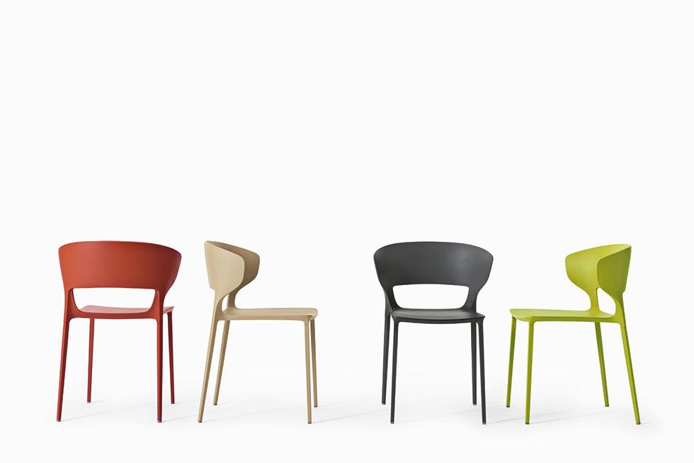 Koki dining chairs from IQ Furniture
