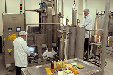 chemistry in food industry