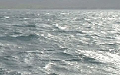 TE sea