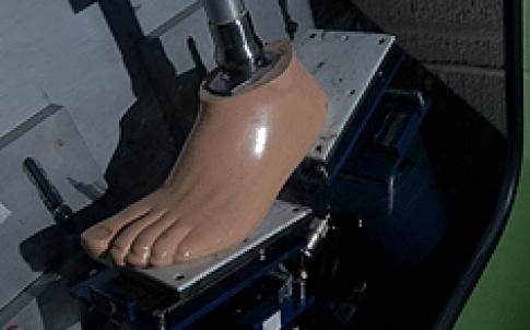 TE prosthetic